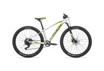 Rock Machine Blizz 27 HD LTD gloss silver/DVO green/black 2020 - 1
